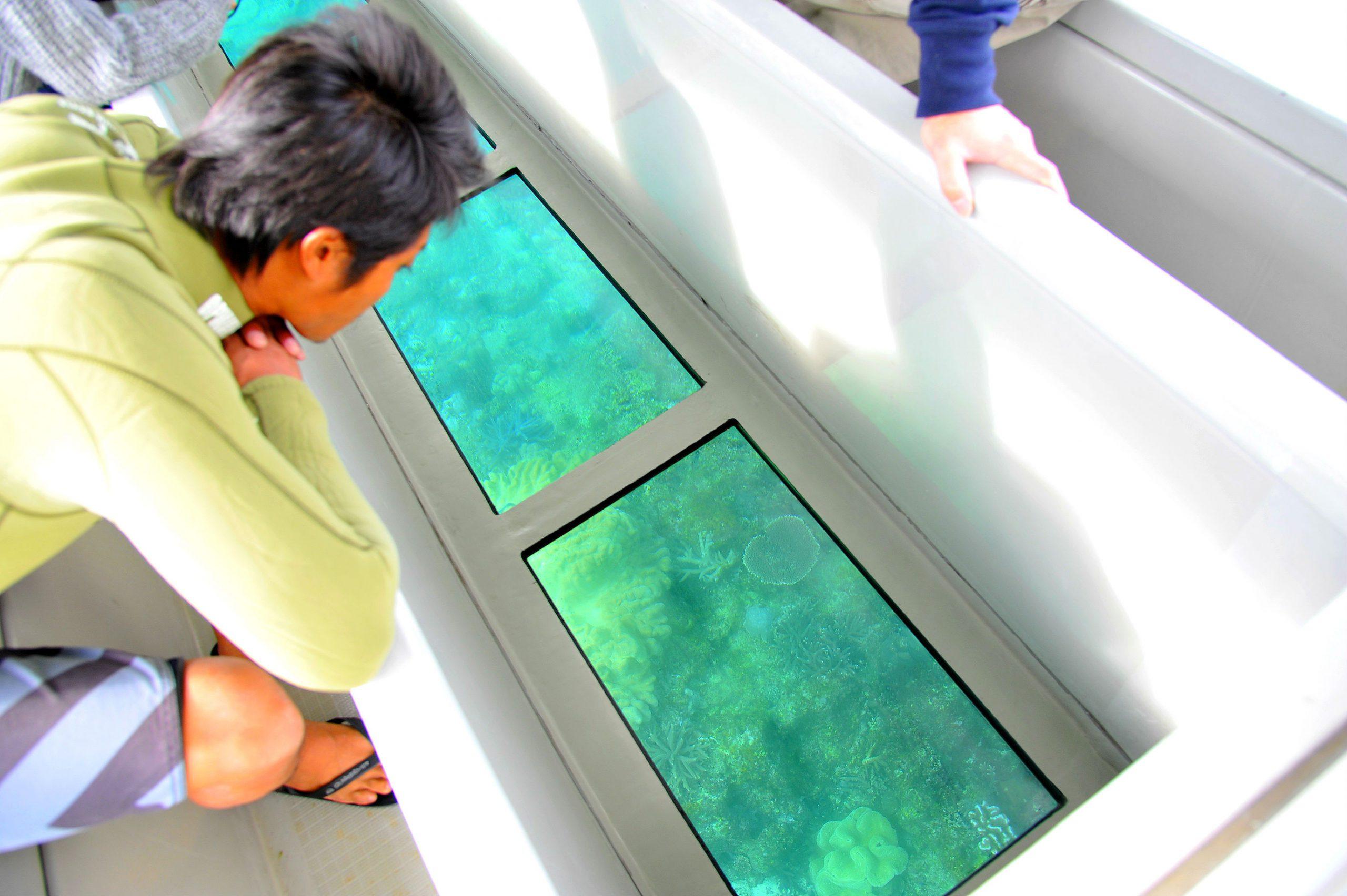 グラスボートで水に濡れずに水中世界を楽しむツアー!